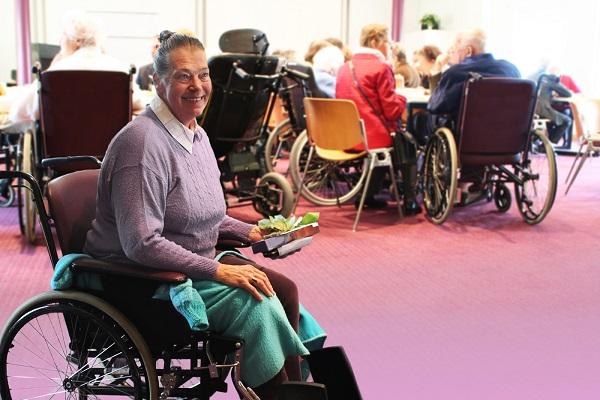 legal help for senior citizens in Delaware